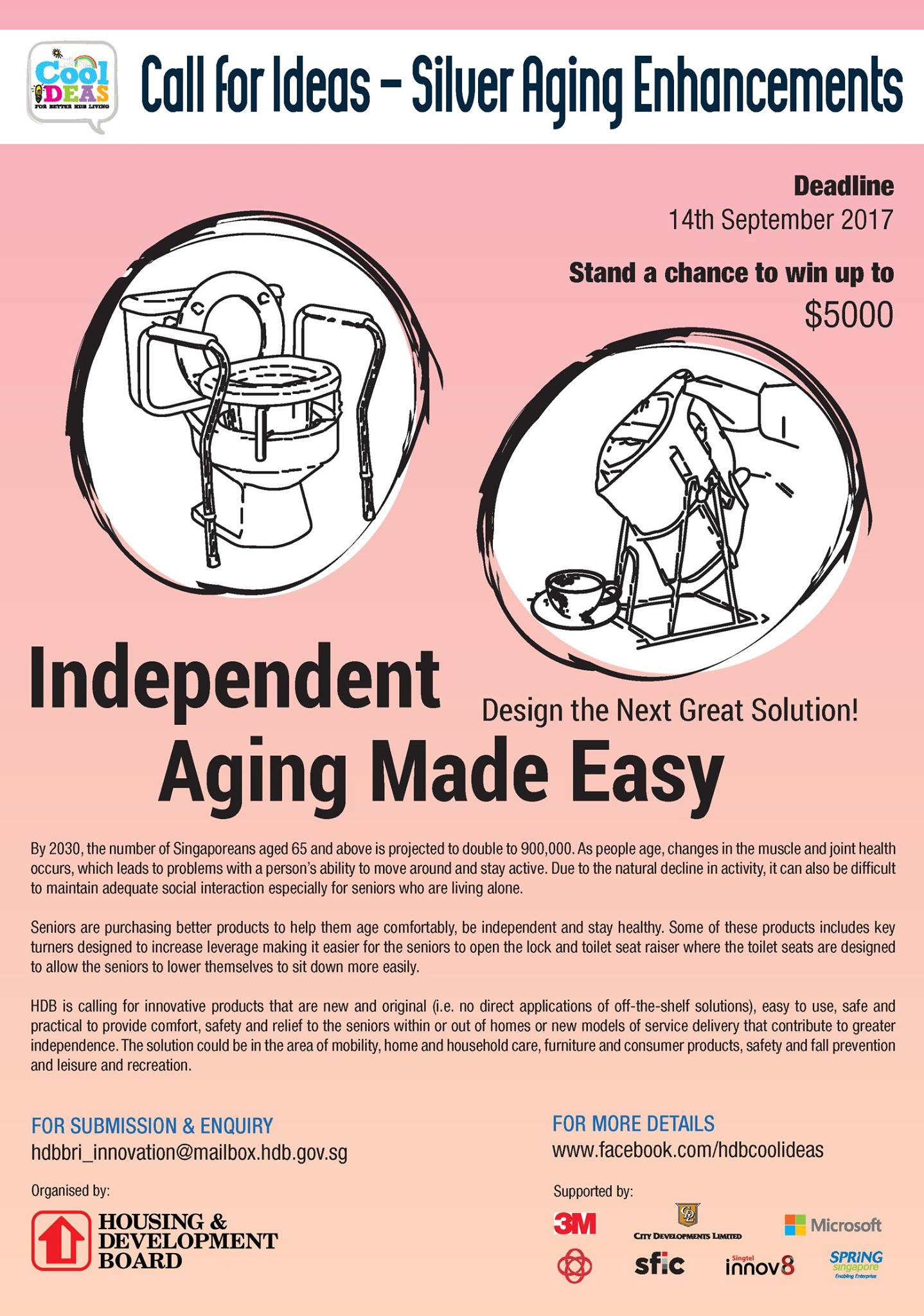 CALL FOR IDEAS - SILVER AGEING ENHANCEMENTS